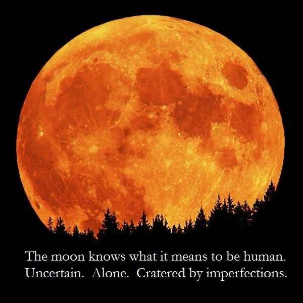 The moon knows