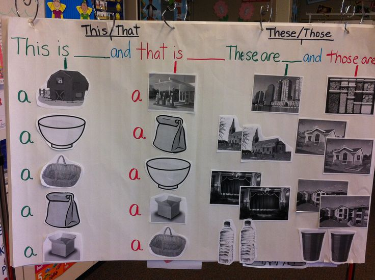 These language frames come from ELD Links Lesson 2 Basic Knowledge. The grammar focus for this lesson is: this/that, these/those, a, an.