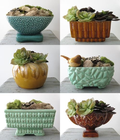 vintage planters show off succulents. This is an awesome idea! I think I would like to use old serving and mixing bowls too! NICE. I think that hens and chicks are just the bomb!