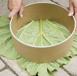 garden stepping stones - Google Search
