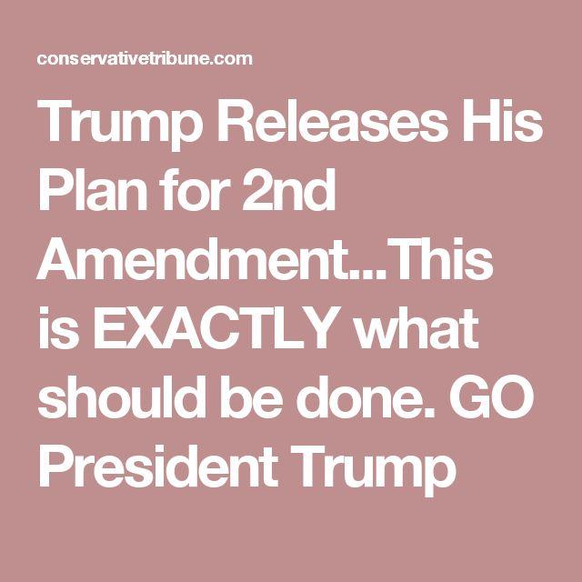The  Best Nd Amendment Ideas On   Gun Rights What