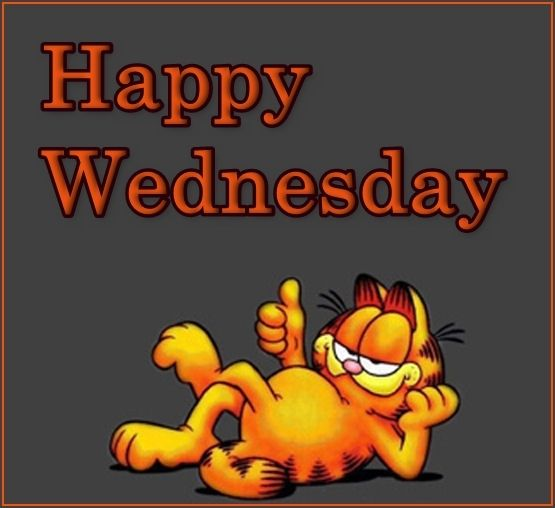 Image result for happy wednesday