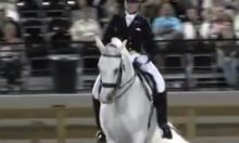 Watch a horse perform freestyle dressage to the Auburn Fight Song, 'Eye of the Tiger' | The War Eagle Reader