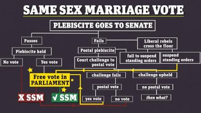 A same sex marriage plebiscite has been called in Australia, we will now vote on a non-binding instrument to guide politicians on how to vote in parliament on the same sex marriage issue.