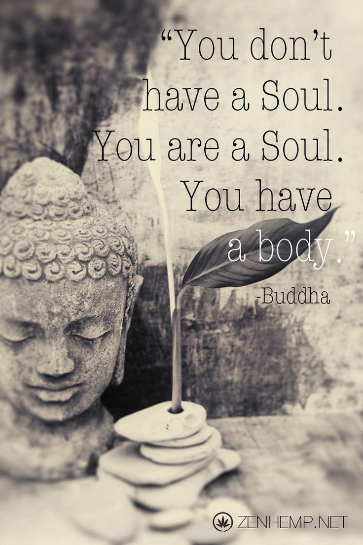 #buddhaquote #soulandbody