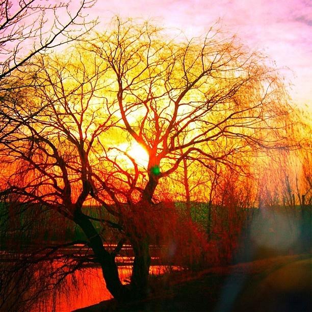 Kamloops Bc Sunset