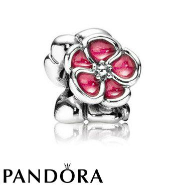 59 Best Pandora Jewellery South Africa Images On Pinterest