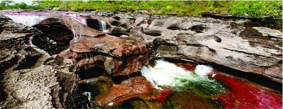 CAÑOCRISTALES TODO INCLUIDO. Ver mas en http://www.viajeprogramado.com/index.php/2013-06-05-13-52-06/2013-06-05-14-02-47/cano-cristales