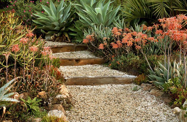 Suculentas ao lado do caminho do jardim, com cascalho e degraus. O resultado é um moderno espaço ao ar livre repleto de beleza natural.  Fotografia: via Lonny.  http://www.decoist.com/garden-oasis-backyard-makeover/garden-pathway-with-steps/