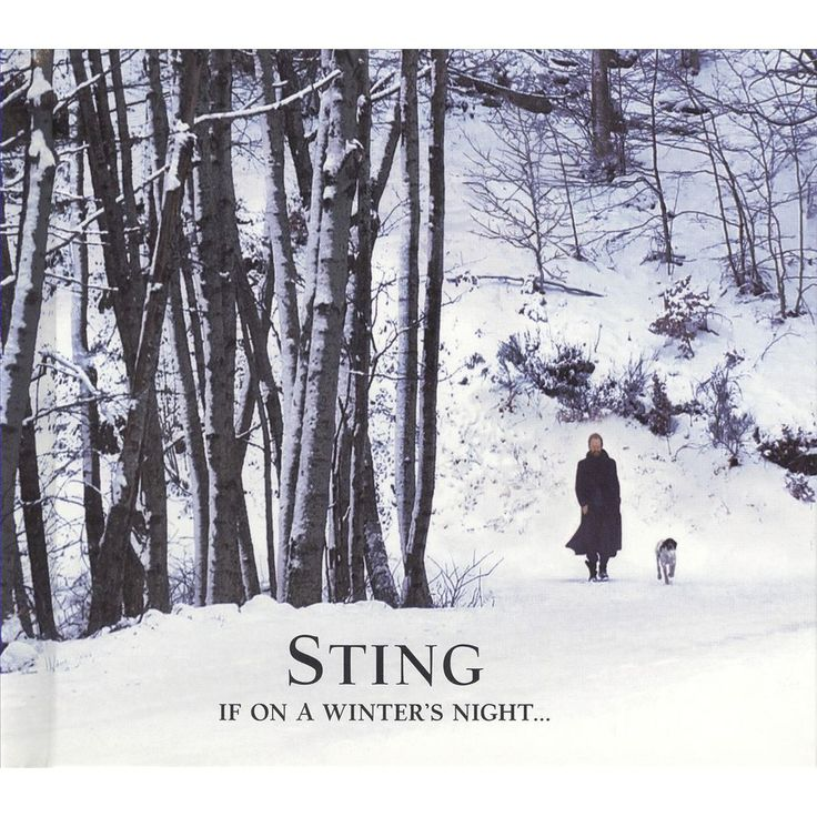 The 57 best images about Sting on Pinterest | Silver foxes, Terry ...