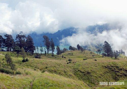 View of Danau Segara Anak. Panorama yang akan dijumpai menuju Segara Anak, Lombok