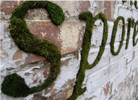 Moss graffiti-too cool. I want to build a brick wall in the backyard just to recreate it.