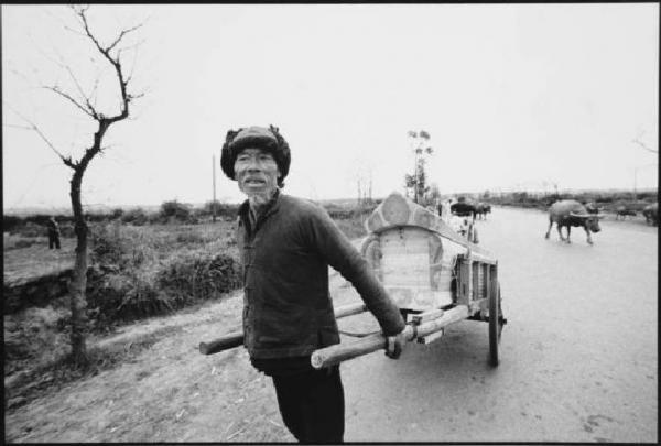 Contadino cinese traina un carretto.