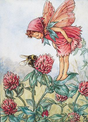 The Red Clover Flower Fairy