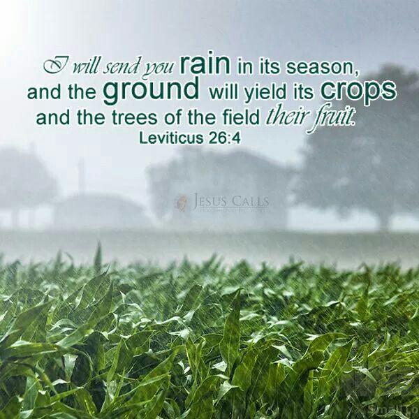 Leviticus 26 4 Leviticus Pinterest God Jesus Bible