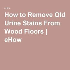 Stains Urine Stains And Stain Wood On Pinterest