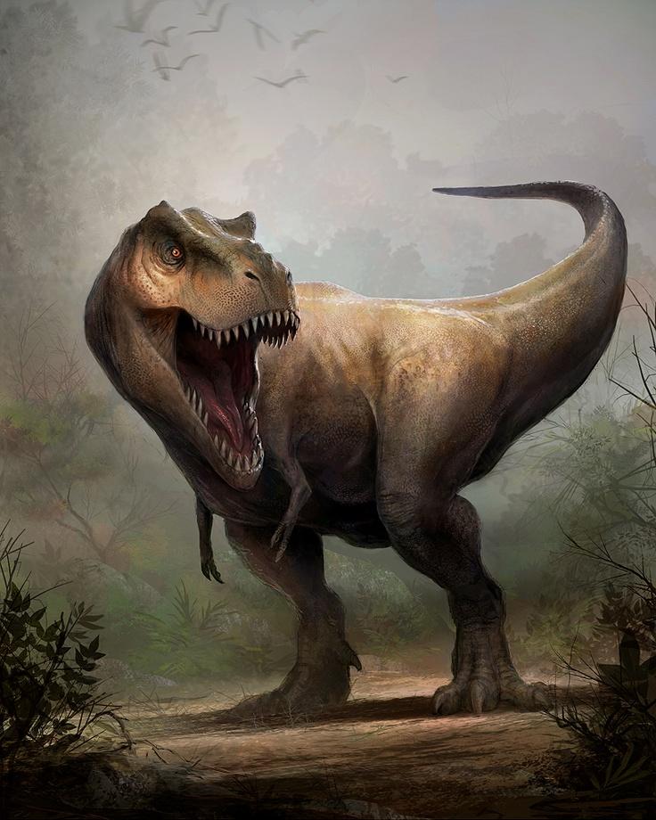 149 besten dino laura Bilder auf Pinterest | Dinosaurier ...