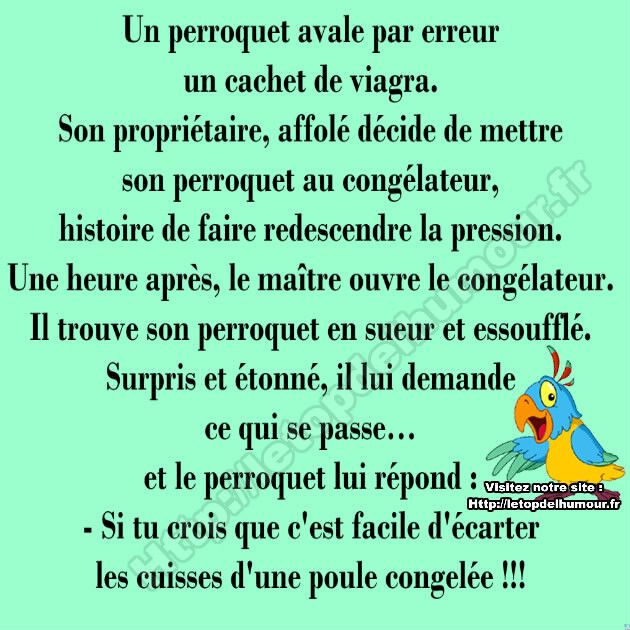 Blague perroquet viagra