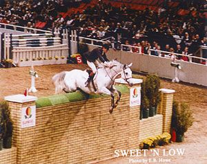 World record puissance jumper: Sweet 'N Low.
