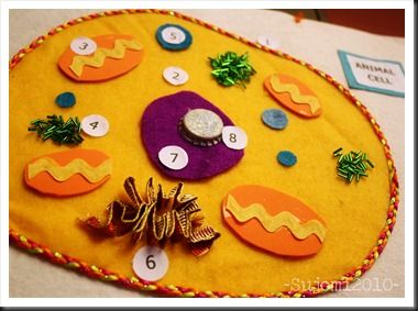 fabric model of animal cell.... This leads to many great ideas for teaching Kayla her age appropriate lessons