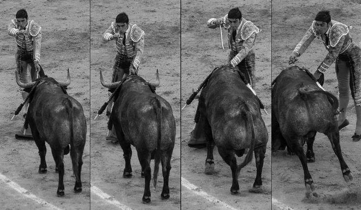 Su estupenda estocada, que fulminó al toro, fue la clave gracias a la que Miguel Ángel Perera logró cortar las dos orejas y salir por la puerta grande. Además, era la segunda vez en esta feria de San Isidro | C.Jordá