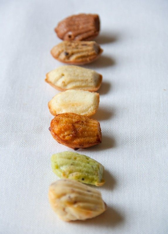 Various flavored madeleines