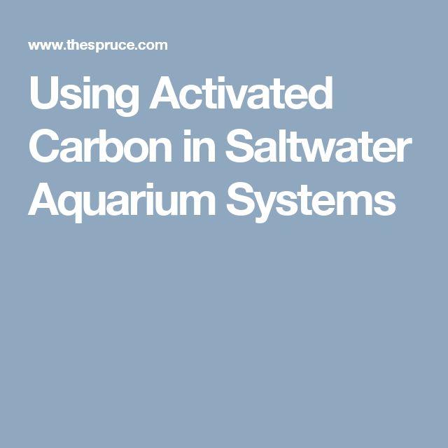 Using Activated Carbon in Saltwater Aquarium Systems