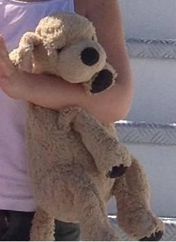 Lost on 09 Jul. 2016 @ Italy. Lost inthe autogrill station campiolo ovest in italy Visit: https://whiteboomerang.com/lostteddy/msg/pk5c2u (Posted by ulla on 13 Jul. 2016)