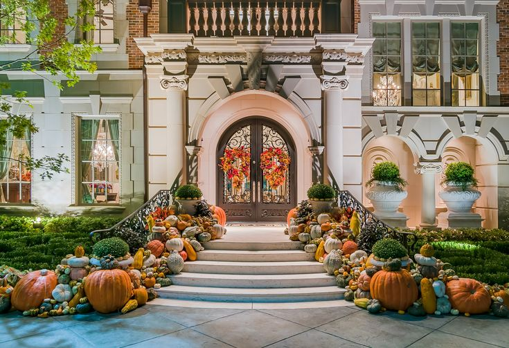 It's Decorative Gourd Season! Enlist Harold Leidner For Festive Fall Decor | CandysDirt.com