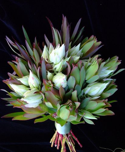 gorgeous and unique wedding bouquet!