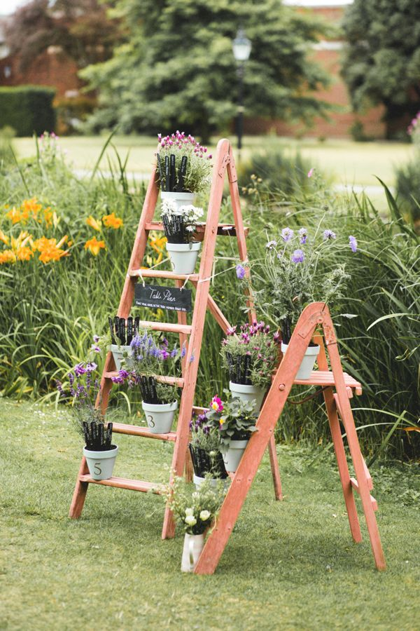 Our pink ladders
