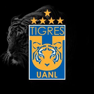 Resultado de imagen para fotos tigres uanl