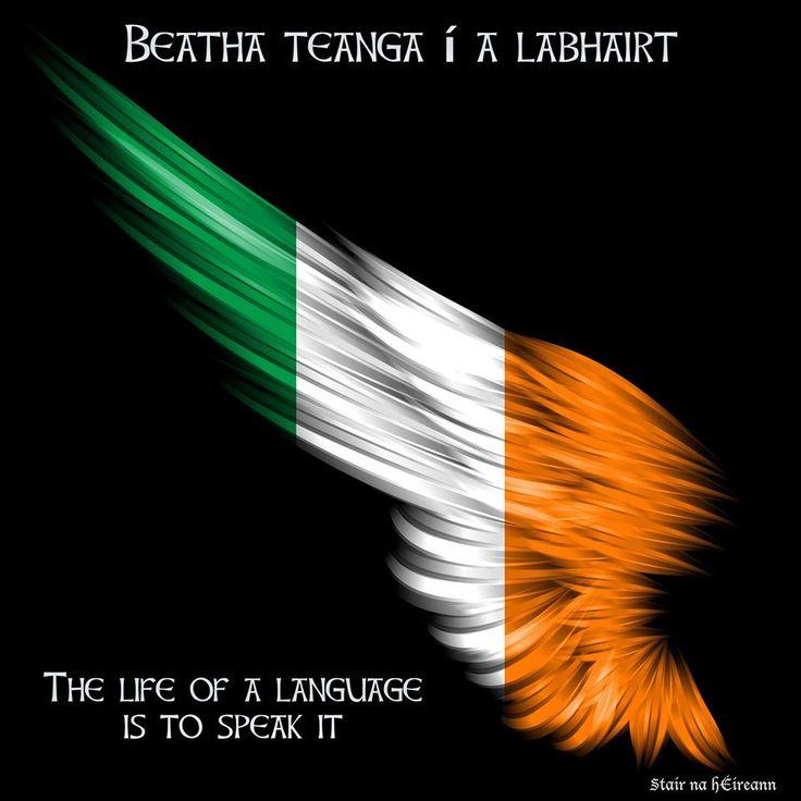Seanfhocail:  Beatha teanga í a labhairt.  The life of a language is to speak it.