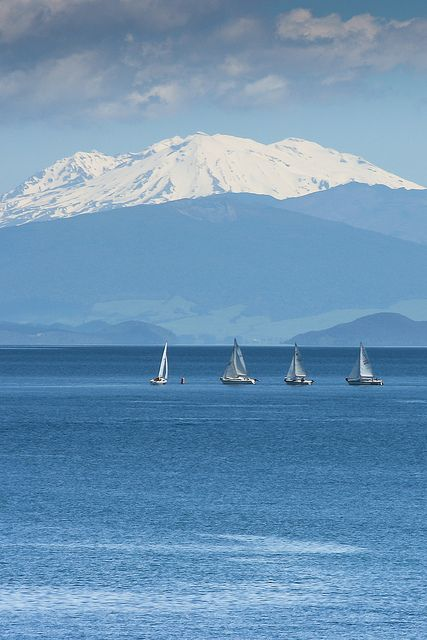 Yachts sailing on Lake Taupo, with the sow caped Mount Ruapehu in the background, New Zealand