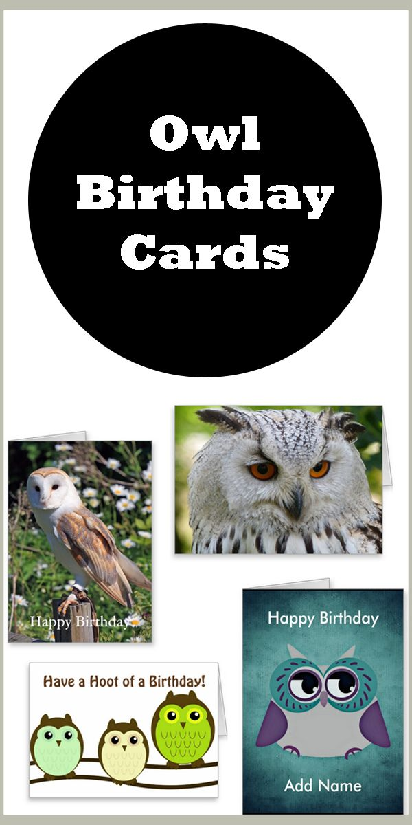 Great selection of Owl Birthday Cards