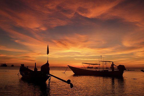 #TamaraSushko #ArtForHome #FineArtPrints #HomeDecor  #sommarbeach @vacation #Asia #Thailand #palm #rexlex #orange #sunrise #KohTao