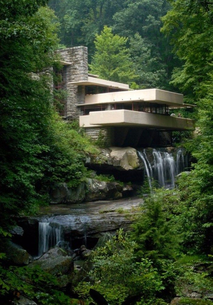 Unique Homes - Ever wondered what Tarzan's home would look like in this day and time? Chances are it wouldn't look anywhere half as cool as this unique home.