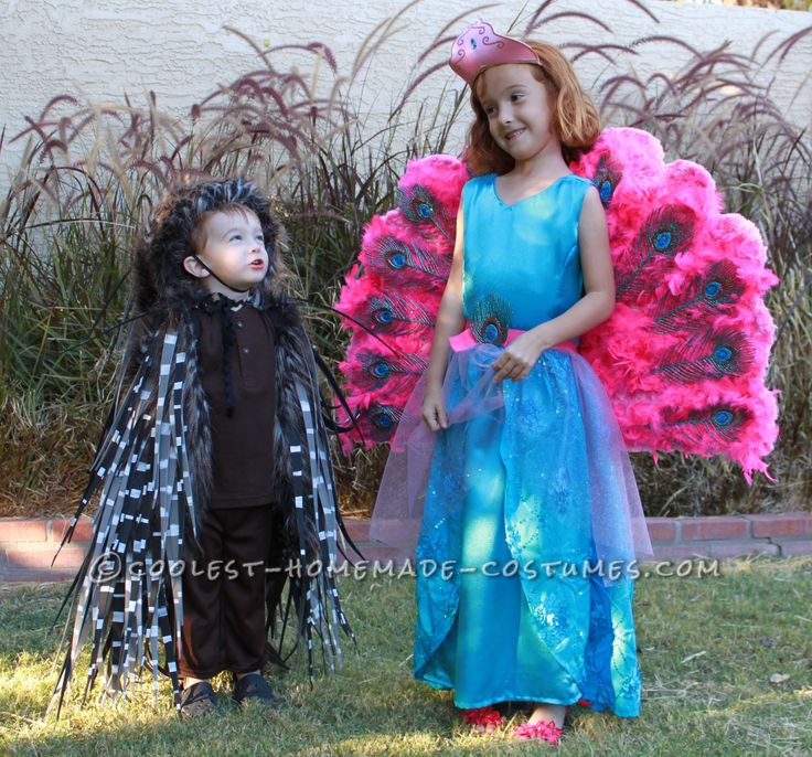 Barbie The Island Princess Doll Costume and a Prickly Porcupine Costume  sc 1 st  Pinterest & 35 (na) pinakamagandang larawan ng Barbie Costume Ideas sa Pinterest ...