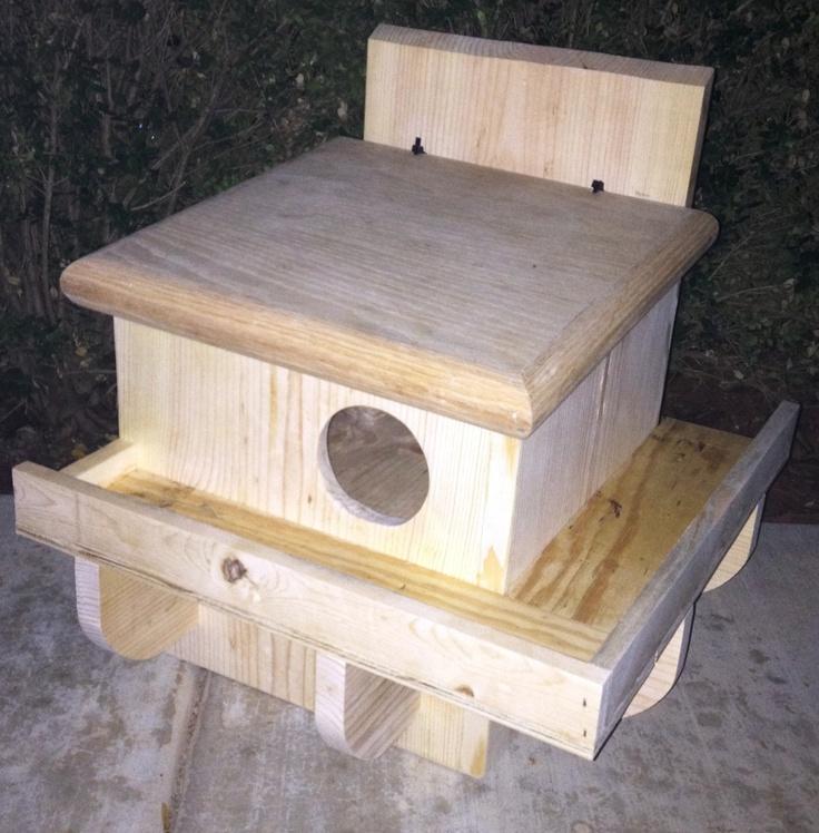 88 best squirrel feeder images on pinterest | squirrels, red