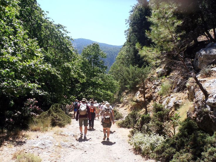 Platanias Taxi Tours: Agia Irini Gorge Tour. Agia Irini Gorge - Sougia Beach Round Trip. The path into the gorge starts at the village of Agia Irini at an..