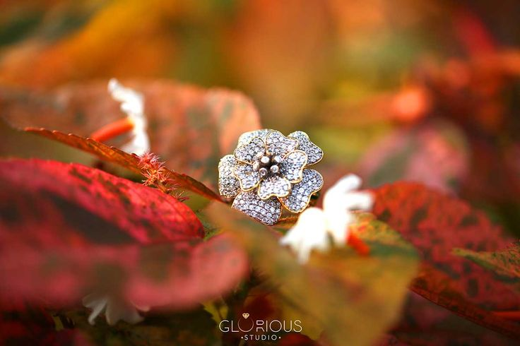 Here is my outdoor activity this morning! ha ha this is a prototype ring.   jewellery photography in #surat #diamondjewellery #jewellery #photography #india #surat #macrophotography #productshoot  #productphotography #naturephotography #outdoorjewelleryphotography #advertisement #thegloriousstudio