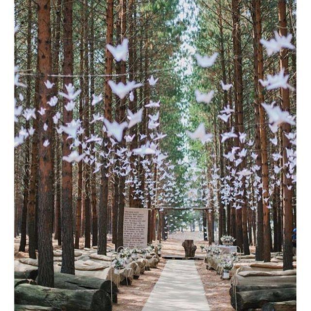 Chuva de tsurus para abençoar a união! Efeito lindo e com certeza cheio de significado e mãos que ajudaram! ❤ - How about a paper crane rain to bless the marriage? {: @carolienandben} #berriesandlove #tsurus #casamentodedia #casamentonocampo #weddingidea