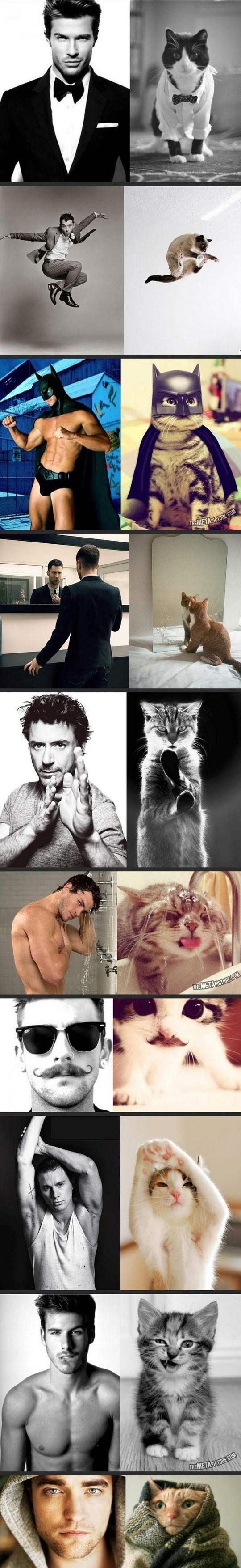 Gee wiz this made me laugh!! male models and cats