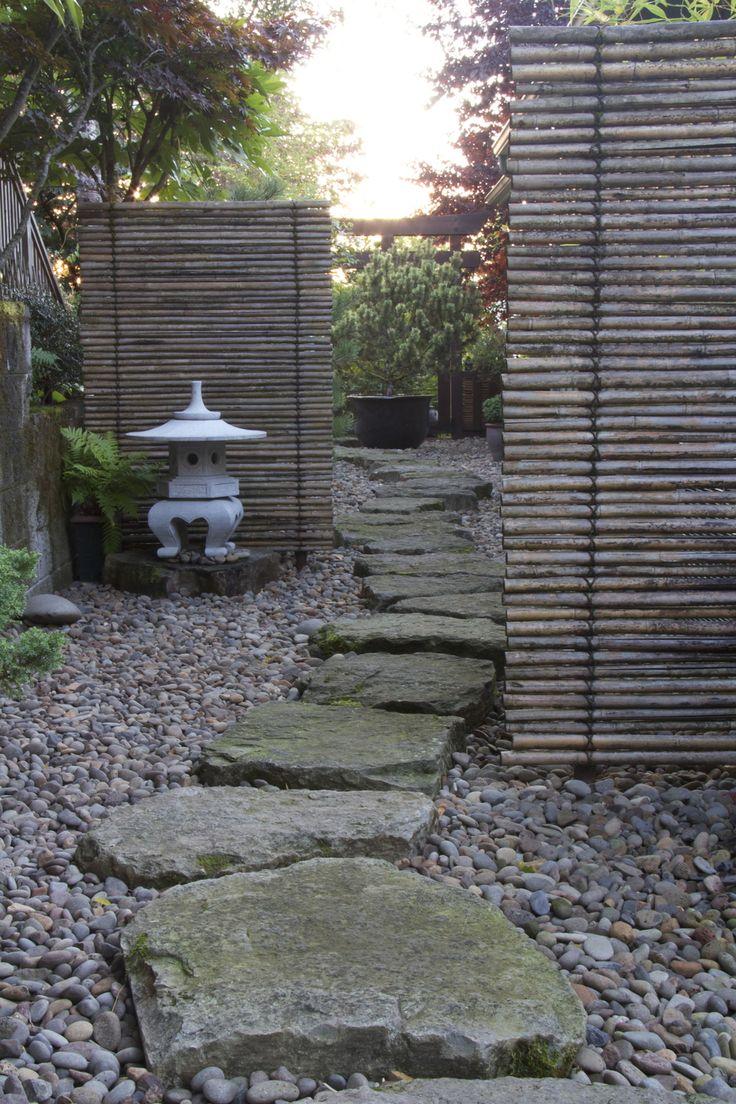 25+ Best Ideas About Bamboo Garden On Pinterest