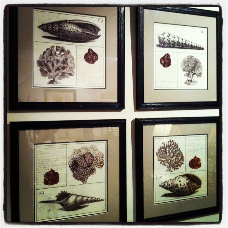 Shell paintings ...ideal for a summer house in a Greek island #karageorgiou