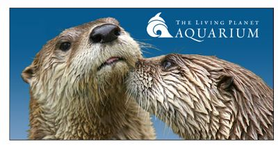 Utah Deal Diva: Helping Utah Families Live on Less: More Discounted Aquarium Tickets Available!