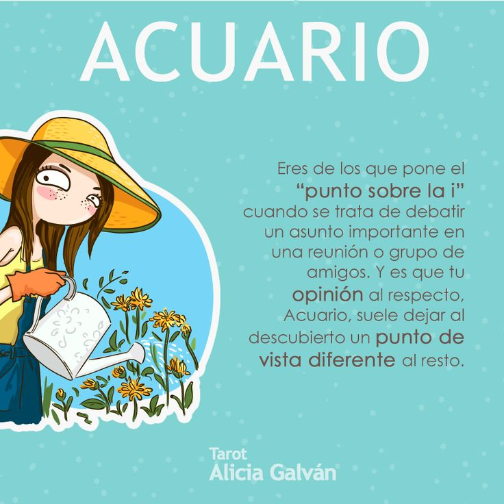 22 best todo sobre acuario images on pinterest aquarium for Si fish and more