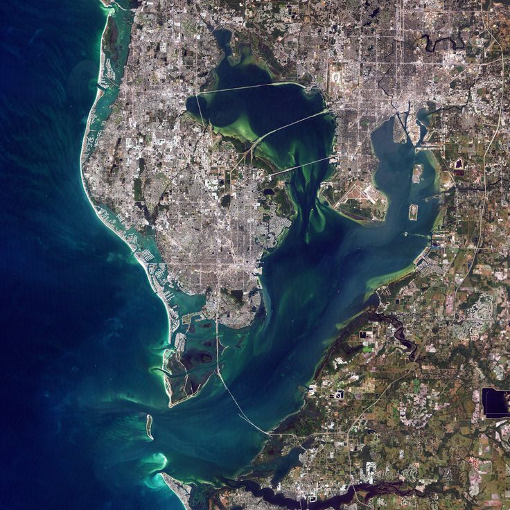 45 best Florida images on Pinterest
