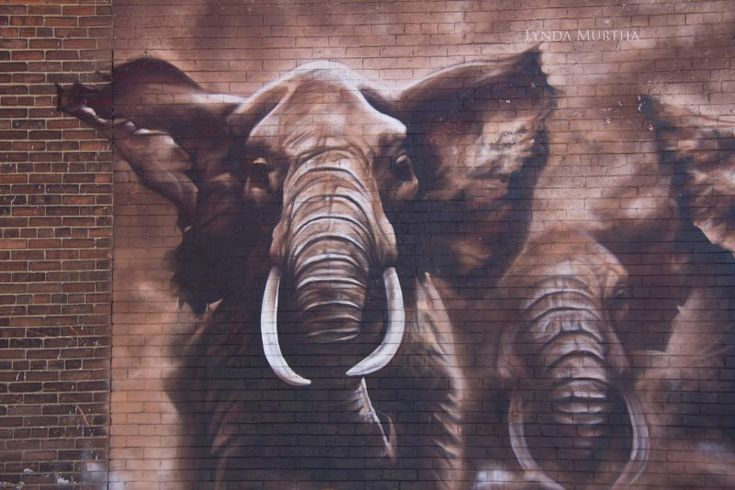 Elephant Stampede - Street Art in Canada