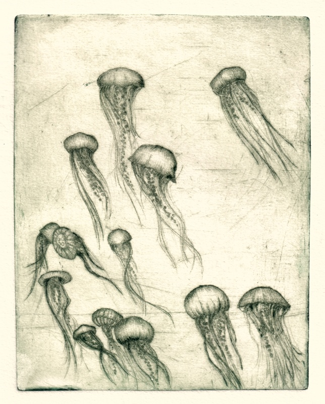 Dry point inspiration for 3/11/14 Oceanica III / dry point / Tiina M. Suomela
